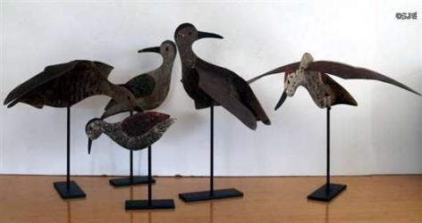 Early Tin Shorebird Group