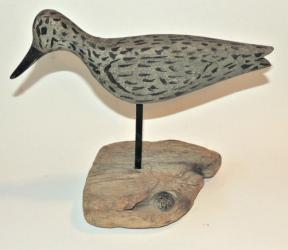 Early 20th Century Shore Bird