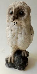 Large Chalk Snow Owl